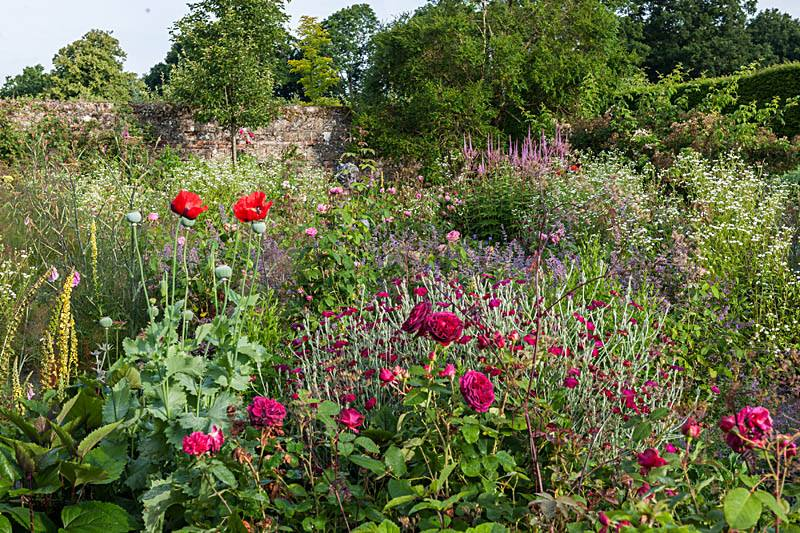 herbaceous parham house gardens sussex