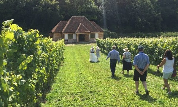 Wine Tours on Wiston Estate