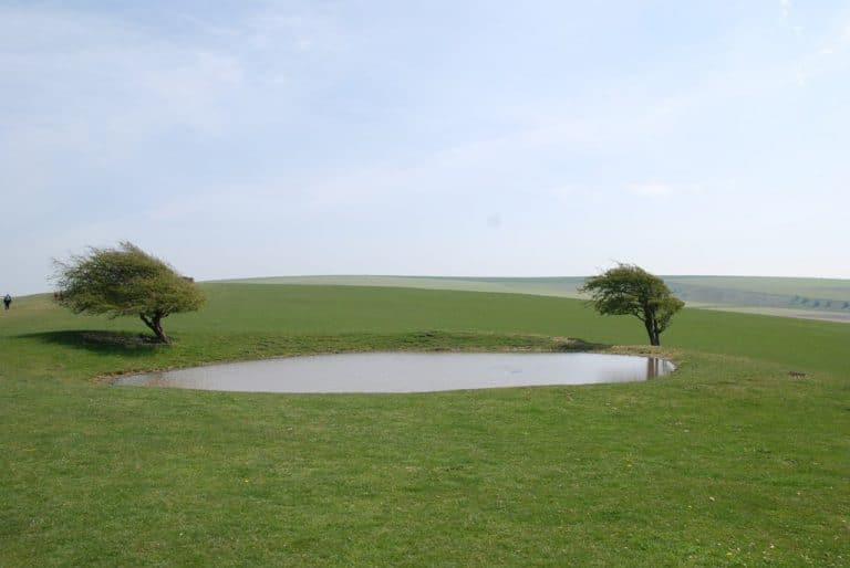 South Downs Dew Ponds