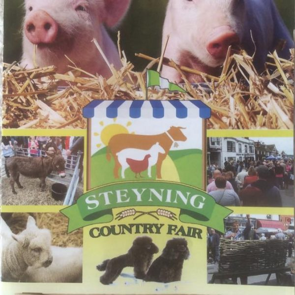 Steyning Country Fair